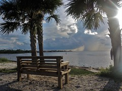 On St. George Island (ckorfanty) Tags: sunlight sun beach shore water sky clouds bench palm trees blue nature sand landscape stgeorgeisland
