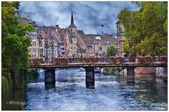 Estrasburgo (mariadoloresacero) Tags: flowers fleurs flores pont bridge puentes fleuve river río alsace alsacia strasbourg estasburgo france francia