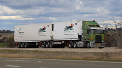 One Sunny ~ One Cloudy (2/2) (Jungle Jack Movements (ferroequinologist)) Tags: collins adelaide kenworth prime mover 124 94 trailers 105 hume highway lachlan vally yass nsw new south wales australia sun shade cloud cover hp horsepower big rig haul haulage freight cabover trucker drive transport carry delivery bulk lorry hgv wagon road nose semi trailer deliver cargo interstate articulated vehicle load freighter ship move roll motor engine power teamster truck tractor diesel injected driver cab cabin loud rumble beast wheel exhaust double b grunt tri axle