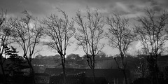 La Houle (Amanda Hinault - 風流韻事) Tags: paysage landscape nature lannion noirblanc nb bw blackwhite monochrome bretagne houle vent darktable ccbysa photobyamandahinault creativecommons pentaxart