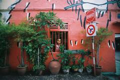 peeping tom (Sunshine Thief) Tags: analog film 35mm lofi vignette lomo eximus uws fujicolor superia melaka streets streetart toycam nature landscape