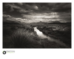 slp18-1857-2.jpg (andypage7) Tags: monochromatic snowdonia landscape morfaharlech cloudy water stream mono moody marshland northwales marsh grasses unitedkingdom creek wild outdoor inlet natural wales scenic monochrome mountains rushes nature blackandwhite uk dramatic