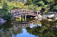 A feeling of tranquility (PeterThoeny) Tags: saratoga california siliconvalley sanfranciscobay sanfranciscobayarea southbay hakonegardens japanesegarden garden park pond lake water bridge woodbridge wood arch archbridge reflection tree tradition traditionaljapan day outdoors sony a7 a7ii a7mii alpha7mii ilce7m2 fullframe vintagelens dreamlens canon50mmf095 canon 1xp raw photomatix hdr qualityhdr qualityhdrphotography fav200