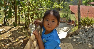 INDONESIEN , SULAWESI, Tanah Toraja, Süße kleine Maus in Lemo, 17612/10620