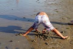Picking shells - Beach life (1) (frenziM´s little world) Tags: beach beachlife spiaggia plage sea meer mare jeu summer water italy cesenatico funny snapshot