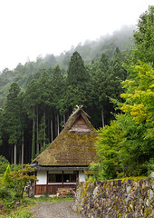 Thatched roofed houses in a traditional village against a bamboo forest, Kyoto Prefecture, Miyama, Japan (Eric Lafforgue) Tags: agriculture architecture asia buildingexterior builtstructure colorimage copyspace countryside day farm fog forest house japan japan18138 japaneseculture kitakuwadadistrict kyotoprefecture landscape miyama nopeople outdoors photography protection roof ruralscene summer thatchedroof tradition tranquility traveldestinations vertical village jp