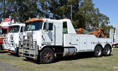 Kenworth Cabover (quarterdeck888) Tags: trucks photos truckphotos australiantrucks outbacktrucks workingtrucks primemover class8 overtheroad interstate frosty quarterdeck jerilderietrucks jerilderietruckphotos flickr bdoubles lorry bigrig highwaytrucks interstatetrucks nikon truck kenworth kenworthclassic kk kenworthclassic2018 truckshow truckdisplay workingclasstrucks noprizes cabover cabovertowtruck towtruck heavytowing oldtowtruck