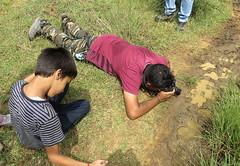 IMG_6155 (mohandep) Tags: hessarghatta lakes karnataka butterflies birding nature wildlife insects signs food