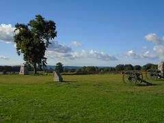 Al 052 (SegTours of Gettysburg) Tags: al