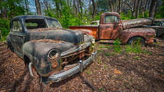 Collection Of Lies (Wayne Stadler Photography) Tags: georgia preserved retro abandoned classic rustography automotive overgrown vehiclesrust rusty junkyard vintage oldcarcity rustographer derelict white