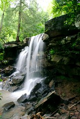 Dirty falls (aaronsemasko) Tags: west virginia waterfall mixed mesophytic forest sandstone rhododendron