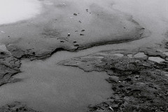 confusion (asketoner) Tags: snow ice water hot smoke smog cloud winter iceland soil mud geothermal
