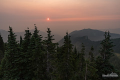 Dim Setting Sun (kevin-palmer) Tags: mountrainier nationalpark mountrainiernationalpark washington cascades mountains nikond750 august summer smoke smoky evening sunset hazy red sun tolmiepeak trees forest sky tamron2470mmf28 scenic view pink orange