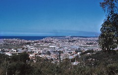 Brookvale and Harbord from Beacon Hill 1958 (eastwoodgeoff) Tags: brookvale harbord manly