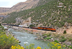 Thermopolis, Wyoming (UW1983) Tags: trains railroads bnsf freighttrains windrivercanyon thermopolis wyoming caspersubdivision
