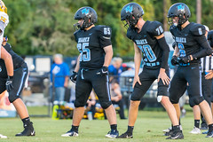 """PVHS v. Palatka-50 (mark.calvin33) Tags: football field sport ball """"high school"""" """"ponte vedra high pvhs block tackle rush run pass catch receiver blocker """"running quarterback fumble completion reception hike pitch snap """"friday night lights"""" fans stands kick """"end zone"""" """"nikon 2018 win athletics athletes """"night photography"""" """"sharks football"""" back d7100"""
