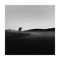 The Forgotten One (Nick green2012) Tags: landscape square silence dawn blackandwhite illume tuscany