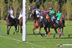 am_polo_cup18_0411 (bayernwelle) Tags: amateur polo cup gut ising september 2018 chiemgau bayern oberbayern pferd pferdesport reiter bayernwelle foto fotos oudoor game horse bavaria international reitsport event sommer herbst