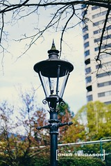 Lantern - 57 (oterrason) Tags: zeiss carl distagon t 35mm f14 zm distagont1435 distagon3514zm fuji film fujifilm mmountadapter walkabout street knickknacks light shade building downtown city washington adaptedlens sky clouds trees branches twigs dof shallow xphotographer fixture bulb lamp streetlight streetlamp dawn spring xt1