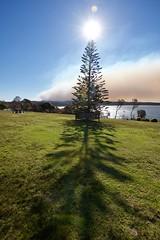 Eerie shadow (jack eastlake) Tags: fires climate wildbeachaus bushfires wildfires brogo bemboka tathra bega valley shire wharf headland destruction change