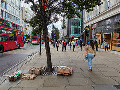 20180921T13-28-05Z (fitzrovialitter) Tags: england gbr geo:lat=5151477000 geo:lon=014654000 geotagged oxfordcircus oxfordstreet unitedkingdom rubbish litter dumping flytipping trash garbage peterfoster fitzrovialitter city camden westminster streets urban street environment london fitzrovia streetphotography documentary authenticstreet reportage photojournalism editorial captureone olympusem1markii mzuiko 1240mmpro microfourthirds mft m43 μ43 μft ultragpslogger geosetter exiftool