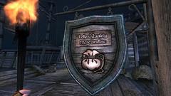 Lelles' (Rain Love AMR) Tags: anvil sign shop store torch lellesqualitymerchandise oblivion pc gaming screenshot screencap