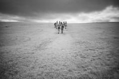 Follow (Infrakrasnyy) Tags: infrared ir 093 sony nex 5n converted camera full spectrum deep black white monochrome bw ireland sligo erie strandhill carrowmore an cheathrú mhór megalithic cemetery
