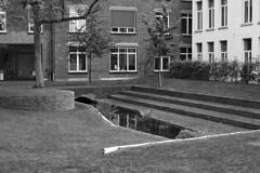 Mechelen, Belgium (bm^) Tags: city mechelen antwerpen belgië tree trees boom bomen planart1450 carlzeiss nikon d700 nikond700 zeiss planar5014zf