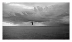 netherland (rcfed) Tags: hasselblad mediumformat film hp5 ilford tanol development landscape sculpture sky cloud water light bird