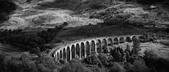 Glenfinnan Viaduct (stephaneberla) Tags: glenfinnan train transport bw blackwhite blackandwhite bridge effects effets fx nb noirblanc noiretblanc paysage photography pont scotland vehicle viaduc écosse