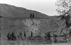 LC001967 (PhotosNormandie) Tags: wwii ww2 battleofnormandy pg kg pow herouvillesaintclair calvados