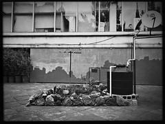 Island (TheKinkyKid) Tags: alone wind mood life hot sunny summer urban urbanphotography urbanexploration streets streetphotography artphotography bnw blackandwhite art mural wall exhibition installation island park square museum downtown mexicocity mexico iphone blackeyssupergrain takashi hipstamatic