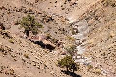 2018-4620 (storvandre) Tags: morocco marocco africa trip storvandre telouet city ruins historic history casbah ksar ounila kasbah tichka pass valley landscape