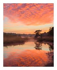 Sunsrise Patersmoer (jos.pannekoek) Tags: landscape netherlands brabant sunrise zonsopkomst d500 1755 nikkor1755f28 reflection