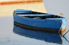 Barques_DSC_6311_01 (gilmartinmiquel) Tags: barca badiadelsalfacs deltadelebre deltadelebro ebrodelta