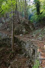 La Valle del Ponte (Roveclimb) Tags: mountain montagna alps alpi prealpi escursionsmo hiking laglio poncionedilaglio colmegnone germanello forest foresta wood albero bosco canyon forra valledelponte montidinar montiditicè montiditicee