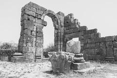 2018/07/09 12h41 ruines de Volubilis 02 (Valéry Hugotte) Tags: 24105 antiquité maroc volubilis canon canon5d canon5dmarkiv chapiteau colonne noiretblanc romain ruines fèsmeknès ma