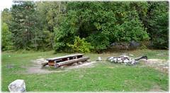 Mörtsjön - Täby (lagergrenjan) Tags: mörtsjön täby skog träd rastplats