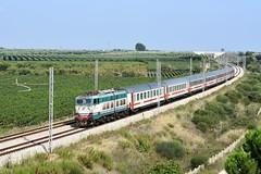E656 049 CAIMANO (luciano.deruvo) Tags: ic700 intercity e656046 trenitalia livreasun fs ferroviedellostato