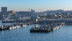 Seagulls meet fishermen / Чайки встречают рыбаков (dmilokt) Tags: природа nature пейзаж landscape dmilokt море sea порт port корабль ship nikon d750