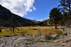Hiking the Cub Lake Trail (MarkusR.) Tags: mrieder markusrieder nikon d7200 nikond7200 vacation urlaub fotoreise phototrip usa 2017 usa2017 colorado rockymountains rockymountainnationalpark landscape landschaft natur nature nationalpark hiking wandern hike trail wanderung cublaketrail