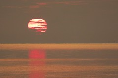 hey baby (new rising sun) (maj488/mike) Tags: apalachicolabay apalachicola florida fl floridalife