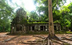 Ta Prohm Temple (Corey Hamilton) Tags: cambodia hdr nikond850 siemreap temple travel