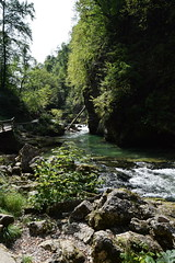 Vintgar Gorge (Blacklili) Tags: slovenia slovenija vintgargorge water river nature trees rocks landscape río árbol bosque roca agua cielo cascada arroyo paisaje hierba