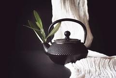 Tea Leaves (d.barnett53) Tags: naturallight black tabletop teapot leaves blackbackground stilllife