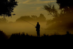 Angler In The Mist (Ed Thorn) Tags: dedham angler riverstour river mist atmospheric earlymorning fishing