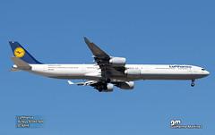 Lufthansa - Chegada da equipa do Bayern (GuilhermeMartinez10) Tags: like sky planespotting spotters lisboa champions lovers love me hobbie follow benfica bayern