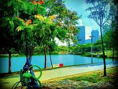 Desa Parkcity, 52200 Kuala Lumpur, Federal Territory of Kuala Lumpur https://goo.gl/maps/xn8i27ZDWn52 #travel #holiday #trip #traveling #旅行 #度假 #亞洲 #Asian #馬來西亞  #여행 #ホリデー #휴일 #праздник #путешествие #วันหยุด #การเดินทาง #park #公園 #パーク #สวนสาธารณะ #парк #공 (soonlung81) Tags: trip سفر parkera วันหยุด vacanza taman park parco malaysia путешествие resa vakantie 휴일 馬來西亞 旅行 reise semester asia parq 여행 パーク парк asian voyage reizen 度假 traveling urlaub ホリデー การเดินทาง 公园 holiday праздник desaparkcity عطلة สวนสาธารณะ 公園 공원 parc vacances fiesta viaggio 亞洲 viaje travel