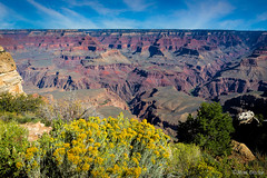 South Rim of the Grand Canyon (Mimi Ditchie) Tags: grandcanyon grandcanyonnationalpark southrimofthegrandcanyon