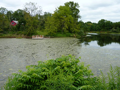 Wargo Pond (Dendroica cerulea) Tags: pond water wetlands reflection landscape summer wargopond stonybrookmillstonewatershedreserve stonybrookmillstonewatershedassociation hopewelltownship mercercounty nj newjersey